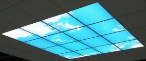 piece aveugle naturasky ciel bleu 240x240 cm